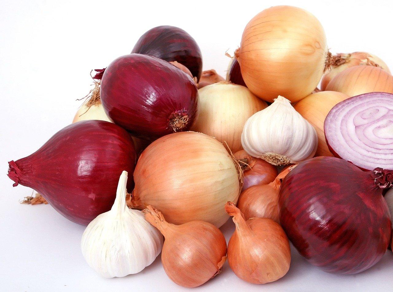 bulb, onions, diet